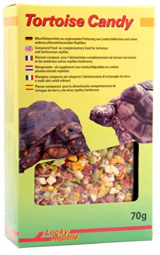 Lucky Reptile Tortoise Candy 70 g, 1er Pack (1 x 70 g)