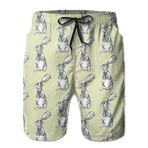 Pencil Rabbits Men's Quick Dry Beach Board Shorts Summer Swim Trunks L -