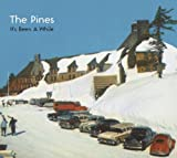 Songtexte von The Pines - It's Been a While