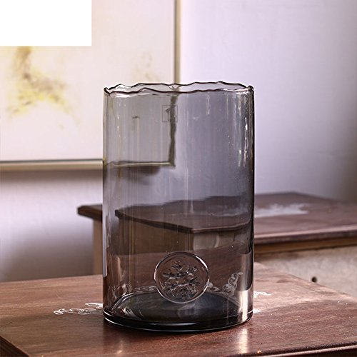 Creative Glass Vase/transparent Hydroponic Vase-b