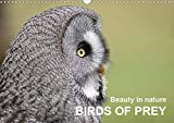 Beauty in nature BIRDS OF PREY (Wall Calendar 2020 DIN A3 Landscape): A variety of different birds of prey in natural settings (Monthly calendar, 14 pages )
