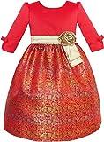 JW32 Girls Dress Fit & Flare Glitter Jacquard Christmas Holiday Age 5 Years