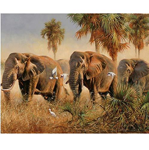 Huangzhang DIY Sin Marco Elefantes DIY Pintura por Números Animales Moderno Imagen...