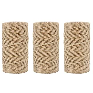 Tenn Well 1000 Feet Jute Twine, 2mm Natural Jute String Arts&Crafts Twine for Gift Wrapping, Picture Display, Wedding Decoration and Garden