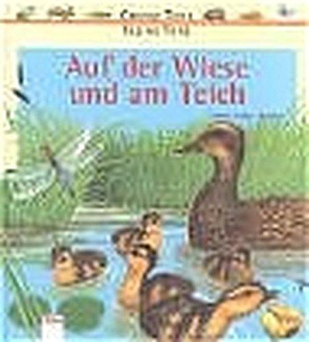 Auf der Wiese und am Teich (Edition Bücherbär)