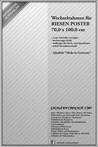 Wechselrahmen Bilderrahmen für Riesen Poster - Größe 70 x 100 cm, silber matt alulike hellgrau - Antireflex Acrylglas (Riesen Bilderrahmen)