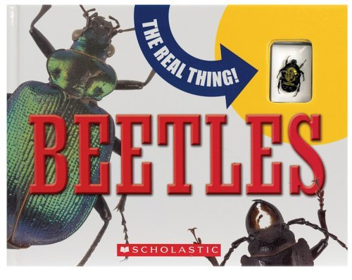 The Real Thing! Beetles by Mary Packard (2006-04-01)