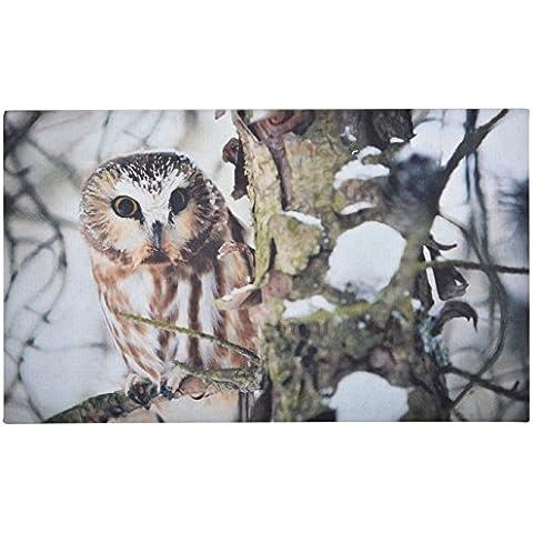 Frutti caduti 76 x 45 x 0,5 centimetri Owl stampata Zerbino