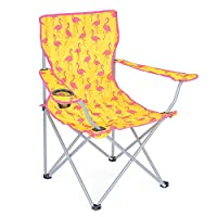 Folding Camping Festival Chair Flamingo Watermelon Funky Portable Seat With Bag 5