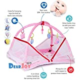 DearJoy Baby Bedding Set/Baby Bedding Set with Mosquito Net and Baby Play Gym with Mosquito Net (Pink Bunny Print)