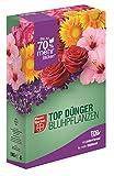 Bayer TOP Dünger BLÜHPFLANZEN 1 kg