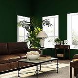 retro - muster aus tapete, bedeckt mit einer vollfarbe tapeten waren für 57.05 quadratmeter,dunkelgrün