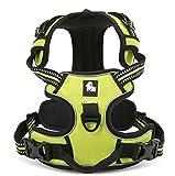 PENTAQ Verstellbare weiche gepolsterte keine Pull Hund Geschirr Outdoor-Abenteuer Haustier Warnweste mit Griff schützenden Nacht Nylon Heavy Duty Sicherheitsgriff für Hund Training oder Walking Haustier Geschirr grün (XS (33-43cm)