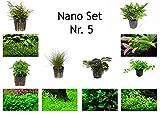 Pflanzen fürs Nano-Aquarium: Set von Tropica