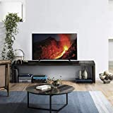 Panasonic 80 cm (32 Inches) HD Ready LED TV TH-32F250DX (Black) (2018 model) | Thin Bezel, Bluetooth
