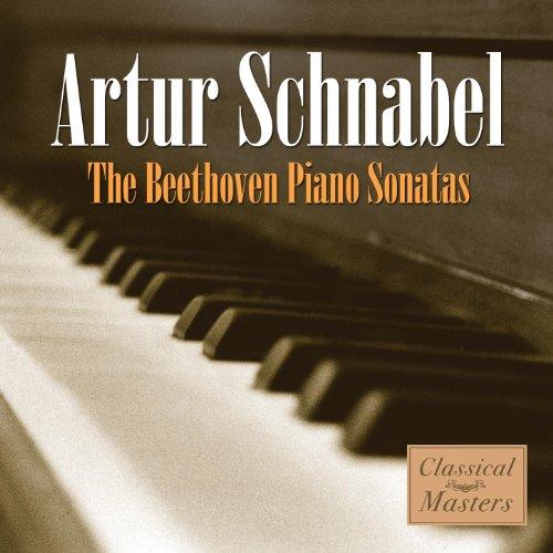 Piano Sonata #32 In C Minor, Op. 111 - 1. Maestoso, Allegro Con Brio Appassionato