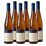 Deidesheimer Kalkofen Riesling Spätlese Weißwein Pfalz 2015 trocken
