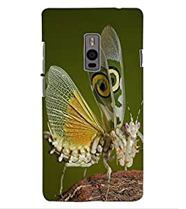 ColourCraft Beautiful Butterfly Design Back Case Cover for ONEPLUS TWO