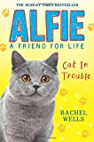 Alfie Cat in Trouble (Alfie a Friend for Life)