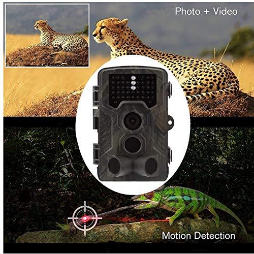 JF Room Wildkamera mit Bewegungsmelder Nachtsicht 16MP Fotofalle 1080P Full HD Jagdkamera 42 IR LEDs Infrarot 20m Überwachungskamera IP65 Wasserdicht 0,3s Auslösezeit Kamera (Jagdkamera)