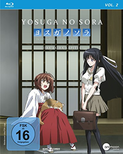 Vol.2: Das Akira Kapitel [Blu-ray]