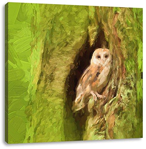 Schleiereule in der Baumhöhle Kunst Pinsel Effekt, Format: 40x40 auf Leinwand, XXL riesige Bilder fertig gerahmt mit Keilrahmen, Kunstdruck auf Wandbild mit Rahmen, günstiger als...