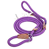 Grand Line Reflective Climbing Rope Slip Lead Pets Leash for Small, Medium, Large and Extra Heavy Dogs and Cats - 1.5m Long
