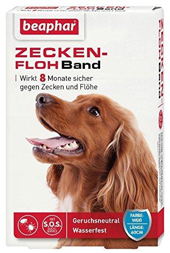 Zecken-Flohband Hund | Wirkt 8 Monate gegen Zecken und Flöhe | Ungezieferband mit SOS-Suchservice | Wasserfest | Farbe: Weiß | Länge: 60cm