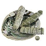 6-tlg Räucherset | Abalone Räuchermuschel 13-16cm + 3 x Kräuter Bündel (Smudge Bundle) Salbei White Sage + Zeder + Beifuß + Booklet + Zubehör | 81094