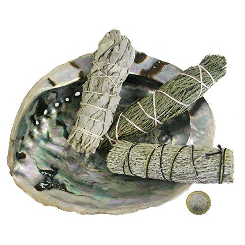 Räuchern Set 6-teilig INDIANISCHES Lakota Räucherwerk #81112 | Räuchermuschel 12-14 cm, 3 x Kräuterbündel
