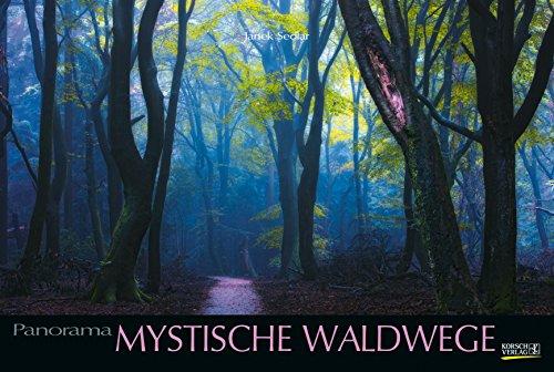 Mystische Waldwege 215519 2019: Großer Foto-Wandkalender über faszinierenden Pfade im Wald. Edler schwarzer Hintergrund und Foliendeckblatt. Panorama Querformat: 58x39 cm. (Ein Tag Wald Im)