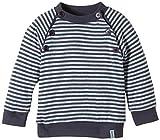 Lana Natural Wear Unisex - Baby Pullover Pulli Momo, Gestreift, Gr. 68 (Herstellergröße: 62/68), Mehrfarbig (Ombre Blue-Blue Air 2204)