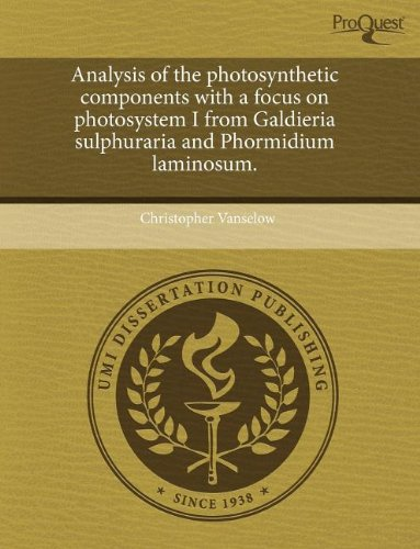 Analysis of the Photosynthetic Components with a Focus on Photosystem I from Galdieria Sulphuraria and Phormidium Laminosum