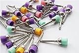 dentallabore 50Polieren Polierer Pinsel Schüssel Typ Colorful Nylon Tassen