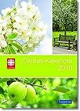 Caritas-Kalender 2018: Das Caritas-Kalenderbuch 2018