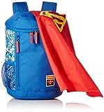 Puma Blau Superman Backpack