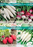 Seklos LT RADISH SEED COLLECTION - 4 IN 1 PACKET