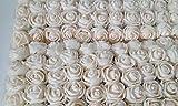 AJL Srls UNIP 144 Rose ROSELLINE VELATE Foam Natural 2 cm per BOMBONIERE SPOSI Compleanno Comunione
