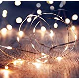 Shining Decors 20 LED Battery Operated Outdoor Indoor Waterproof FAIRY String Copper Wire Lights,White