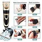 Dog Clippers, Professional Electric Cat Dog Grooming Clippers Kit with 4 Comb/Scissors/Nail File/Claw/Hair Clippers… 13