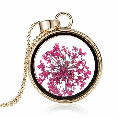 AMDXD Damen Kette Vergoldet Rosa Trockene Blumen im Runde Glas Echt Blumen Anhänger Halskette 60CM (Trocken Blume)