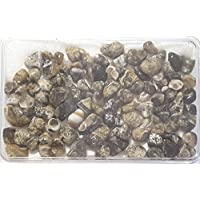 KRIO® - schöner Turitella Achat in Kunststoffdose liebevoll abgepackt preisvergleich bei billige-tabletten.eu