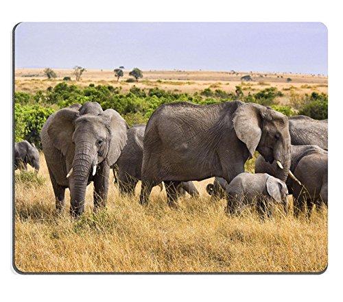 Luxlady alfombrilla para ratón grupo de elefantes de pie en el salvaje...