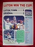 Luton Town 3 Arsenal 2 - 1988 Littlewoods Cup final - souvenir print
