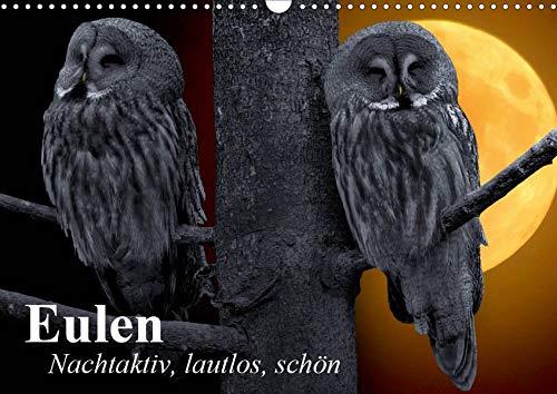 Eulen. Nachtaktiv, lautlos, schön (Wandkalender 2020 DIN A3 quer): Nachtaktive Schönheiten und lautlose Jäger (Monatskalender, 14 Seiten ) (CALVENDO Tiere)