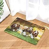 fuhuaxi DREI Nette Basset-Hunde, die auf der Innentürmatte des Grasbadezimmerteppiches rutschfesten Bodeneingangs im Freien Laufen, 40x60 cm Badezimmermattenbadezimmerwolldecke