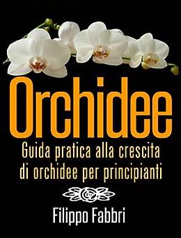Orchidee. Guida pratica alla crescita di orchidee per principianti. di [Fabbri, Filippo]