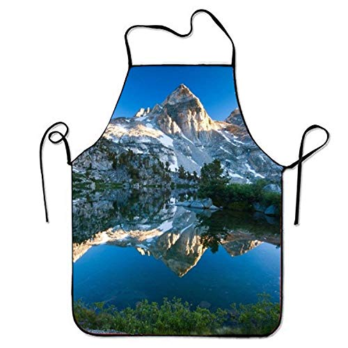 Icndpshorts Mountain Lake Aprons Waterproof Aprons with Adjustable Kitchen Cooking and Bib BBQ Apron (Mountain Black Lab The)