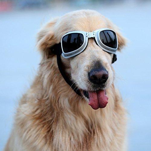 PETLESO® Large Dog Goggles Sunglasses UV Goggles Goggles Golden Retriever Goggles Square by Pet Leso