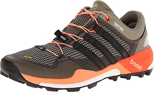 Adidas Terrex Aire Libre Trail Running Shoe Boost